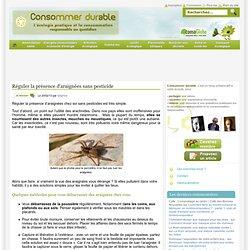 Réguler la présence d'araignées sans pesticide