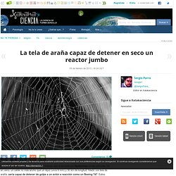La tela de araña capaz de detener en seco un reactor jumbo