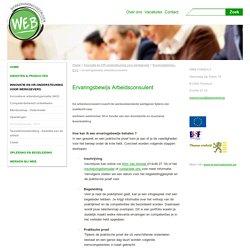 ervaringsbewijs arbeidsconsulent - Webwerkt
