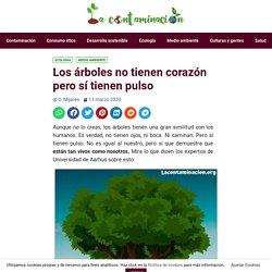 Los árboles no tienen corazón pero sí tienen pulso - La Contaminación