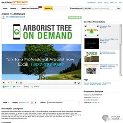 Arborist Tree on Demand