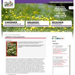 Arbres et pollinisateurs — Fête de la Nature 2013