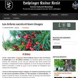 Les Arbres sacrés et leurs Usages - Lothringer Kultur Kreis