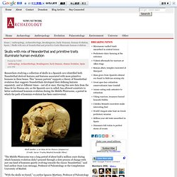 The Archaeology News Network: Skulls with mix of Neanderthal and primitive traits illuminate human evolution