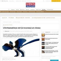 L'Archaeopteryx est (à nouveau) un oiseau