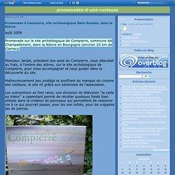 Promenade à Compierre, site archéologique Gallo Romain, dans la Nièvre - Le blog de Anne Chabanelle