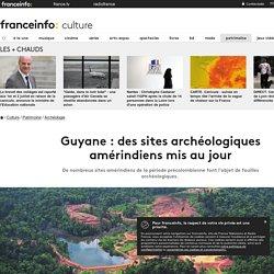 Guyane : des sites archéologiques amérindiens mis au jour