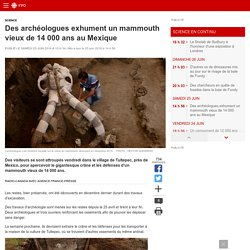 Des archéologues exhument un mammouth vieux de 14000 ans auMexique