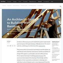 An Architect's Guide to Building With Bamboo