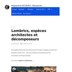 Lombrics, espèces architectes et décomposeurs – Programme SVT BCPST : Ressources