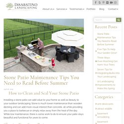 Stone Patio Maintenance Tips You Need to Read Before Summer