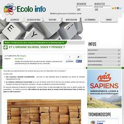 Ecolo-Info » Architecture Eco déco / design Eco-Habitat Mode de vie ONG Reportage TV » Et l'origine du bois, vous y pensez ?
