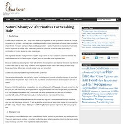 Black Hair 101 » Blog Archive » Natural Shampoo Alternatives For Washing Hair