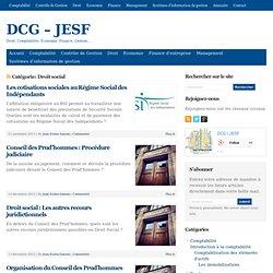DCG - JESF - Archives de la catégorie Droit social