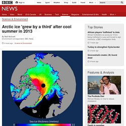 Arctic ice 'grew by a third' after cool summer in 2013 - BBC News