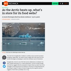 As the Arctic heats up, what's in store for its food webs?