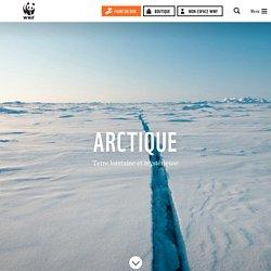 L'Arctique, une région sous pression, actions de WWF