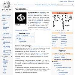 Ardipithèque