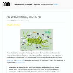 Are You Eating Bugs? Yes, You Are! - Food