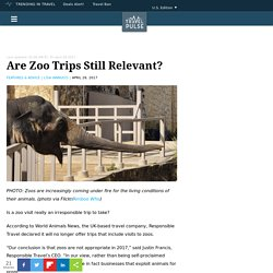 Zoos 'not appropriate in 2017,' CEO of travel company says