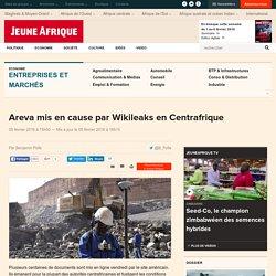 Areva mis en cause par Wikileaks en Centrafrique