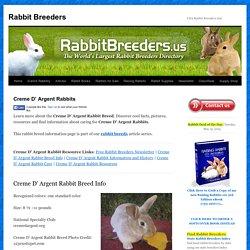 Creme D' Argent Rabbits