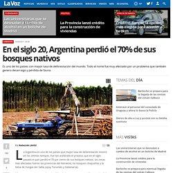 En el siglo 20, Argentina perdió el 70% de sus bosques nativos