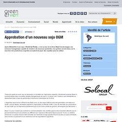Argentine : Approbation d'un nouveau soja OGM