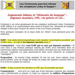 """Arguments bidons et """"éléments de langage"""" : quant tout ErDF se met aux légumes marinés"""