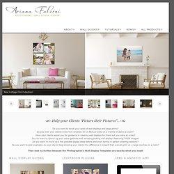 Ariana Falerni Design