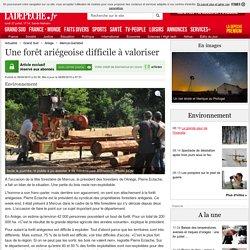Une forêt ariégeoise difficile à valoriser - 08/06/2015