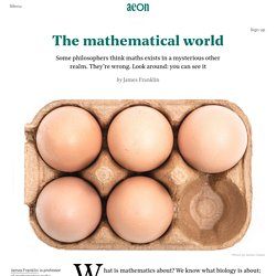 Aristotle was right about mathematics after all — Ae...
