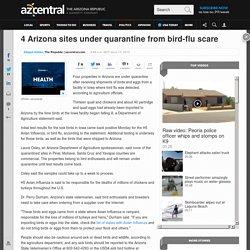 4 Arizona sites under quarantine from bird-flu scare