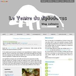 Brick à l'arménienne - Le Ventre du diplodocus - blog culinaire