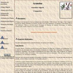Armoise