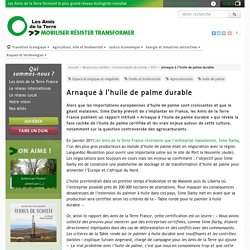 AMIS DE LA TERRE - MAI 2011 - Arnaque à l'huile de palme durable - 12 questions pour comprendre les enjeux