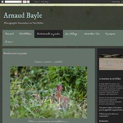 Arnaud Bayle: Biodiversité au jardin
