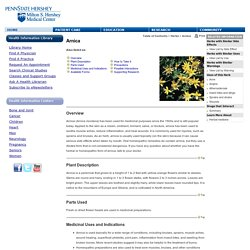 Arnica - Penn State Hershey Medical Center
