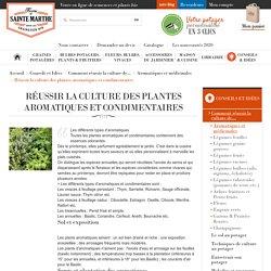 Réussir la culture des plantes aromatiques et condimentaires