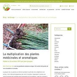 Comment multiplier les plantes aromatiques et médicinales ?