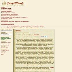 -._,-v-._,- AromAttitude -._,-v-._,-