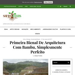 First biennial architecture with bamboo, simply perfect - Somos Verdes