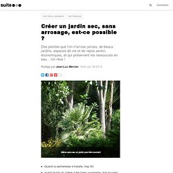 Créer un jardin sec, sans arrosage, est-ce possible ?