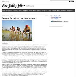 DAILY STAR 11/12/10 Arsenic threatens rice production