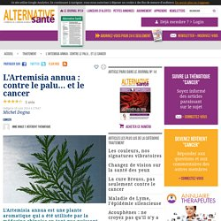 L'Artemisia annua contre le cancer