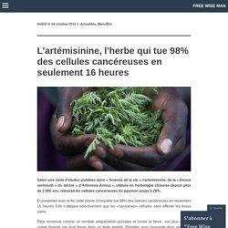 L'artémisinine, l'herbe qui tue 98% des cellules cancéreuses en seulement 16 heures