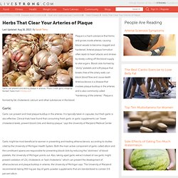Herbs That Clear Your Arteries of Plaque