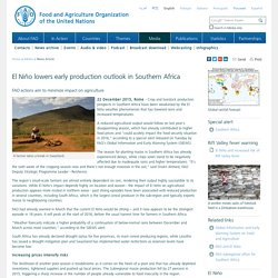 FAO -News Article:El Niño lowers early production outlook in Southern Africa