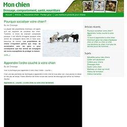 Articles - Maitrisez le dressage de votre chien en quelques minutes par jour
