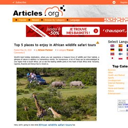 Top 5 places to enjoy in African wildlife safari tours
